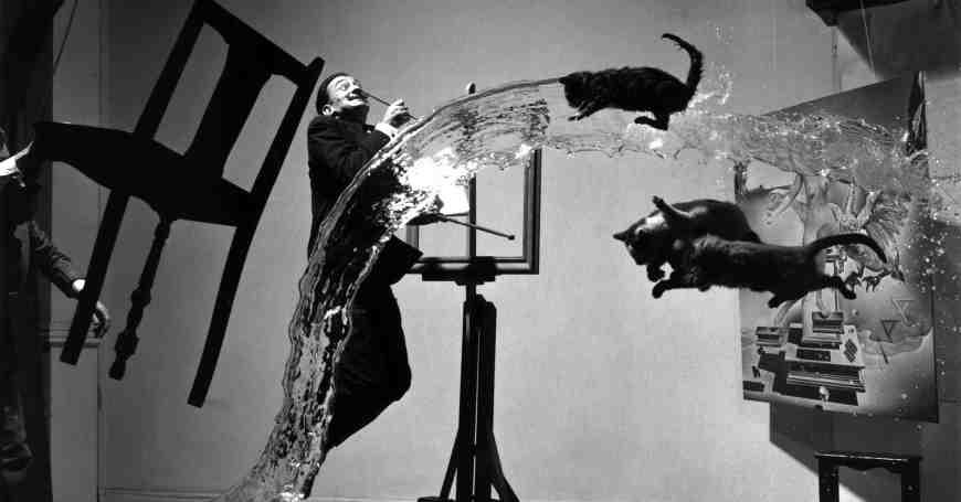 Salvador Dali i mačke - kreativan proces