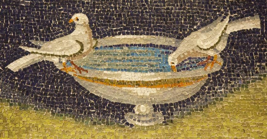 Golubice mozaik